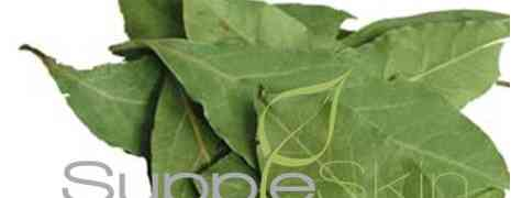 The benefits of whole Bay Leaf #herbal tea