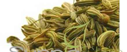 benefits of Fennel Seed #herbs