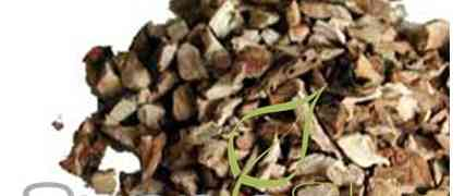 The benefits of Calamus Root organic