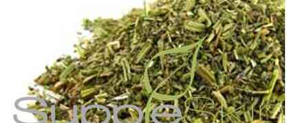 This Native American herb is used for immunity and respiratory problems. #Herb #Tea
