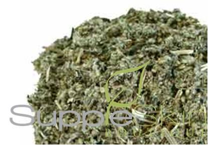 Mugwort organic