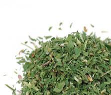 Red Clover Blossom & Leaf - organic - (1oz)
